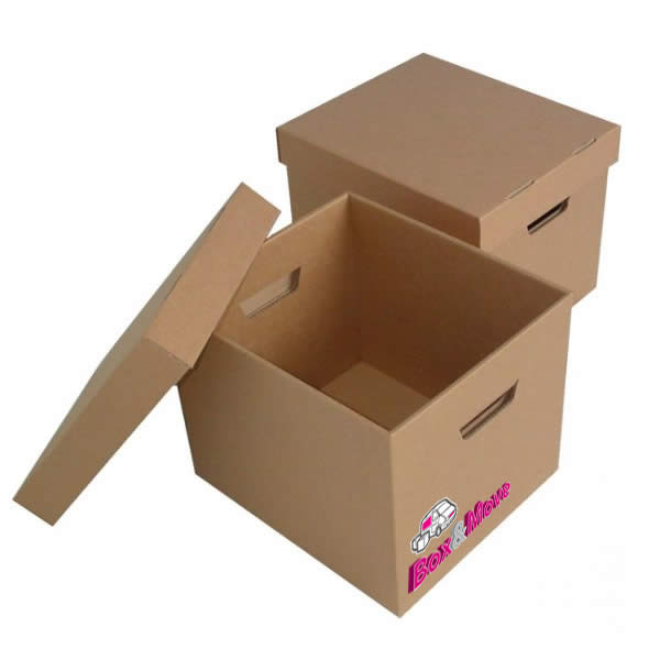 Document Storage Filing Box with lid