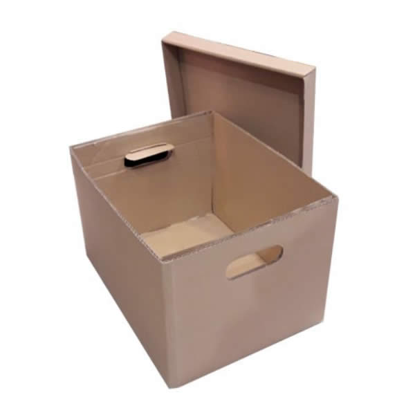 Archive File Box with Lid